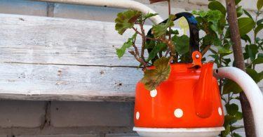orange kettle sat on a planter bench