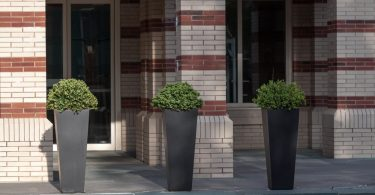 three tall black planters outside a hotel