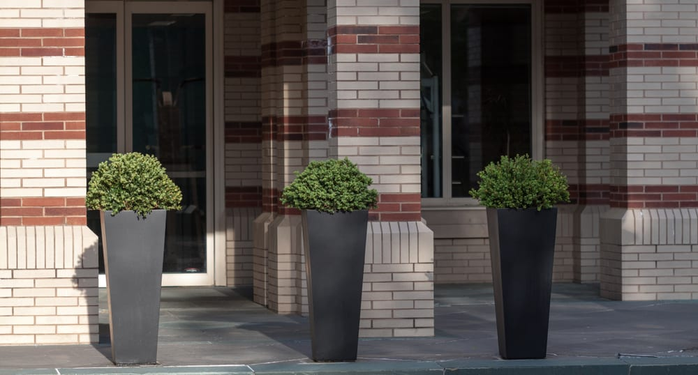 three tall black planters outside a hotel
