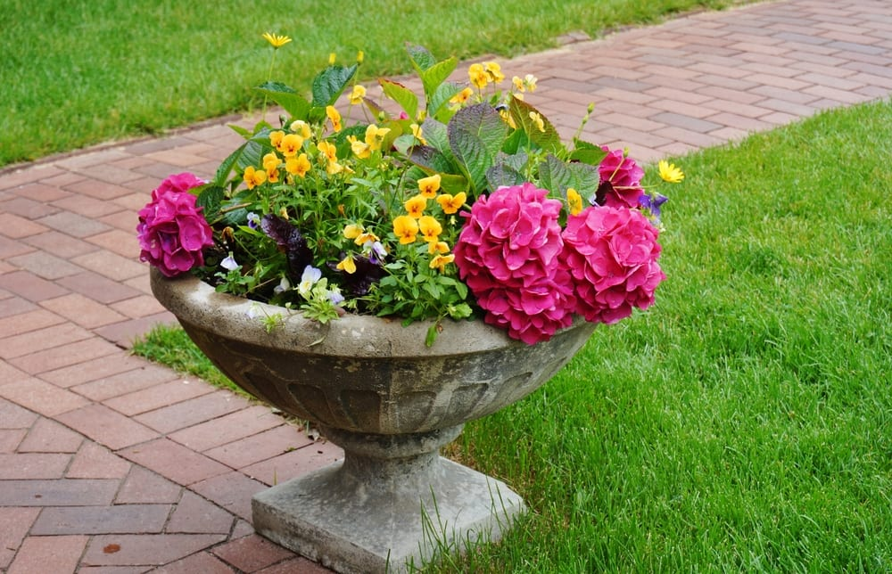 Stone urn container with flowers in a formal garden