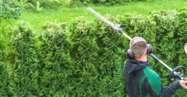 man trimming garden hedge with telescopic trimmer